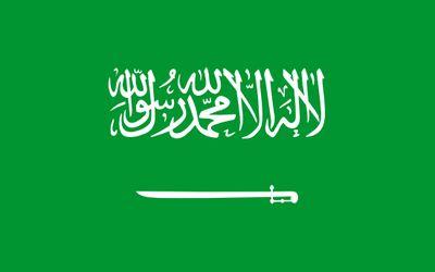 Arabia saudita directorio sitios web