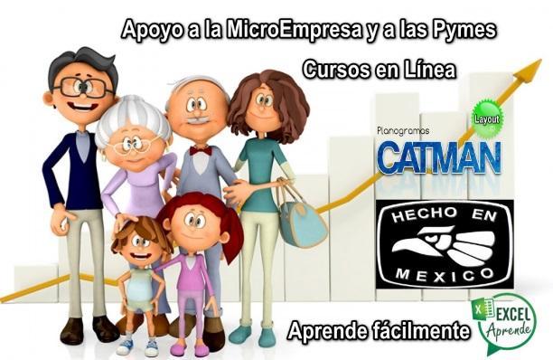 Catman web asesoria y capacitacion excel apoyo a microempresas 398