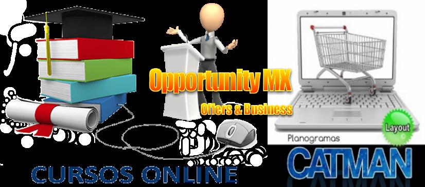 Catman web capacitacion en linea asesorias cursos