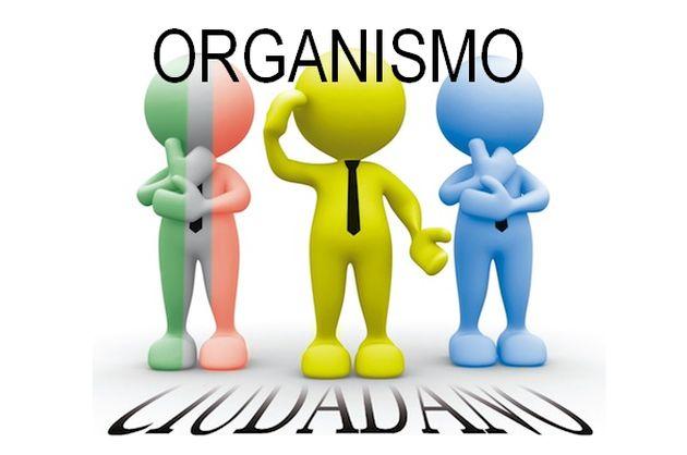 organismos-ciudadanos-630.jpg