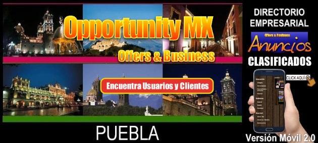 Puebla v2 0 movil 630