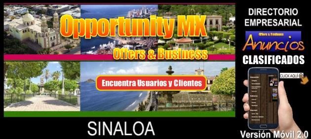 Sinaloa v2 0 movil 630